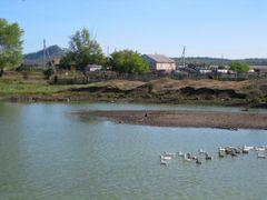 Pond by <b>Anuar T</b> ( a Panoramio image )