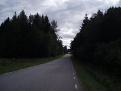 The road between Od and Borgstena 2008 by <b>Biketommy</b> ( a Panoramio image )
