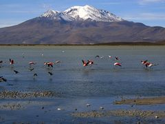 Pohled na jezero Titicaca (View of Titicaca Lake), Bolivia by <b>MAPP HUDRANS</b> ( a Panoramio image )