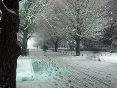 Mystery in a winter day by <b>toritencat</b> ( a Panoramio image )