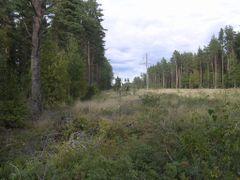 Joekaaru by <b>Aulo Aasmaa</b> ( a Panoramio image )
