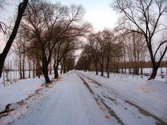 ?,Winter by <b>Без названия</b> ( a Panoramio image )