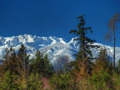 Mountain View (February) by <b>Randy Hall</b> ( a Panoramio image )