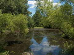 Big Timber Creek, Stone Bridge Branch Pond by <b>hoganphoto</b> ( a Panoramio image )