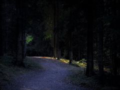 Hyvinkaa, Metsatie / Lesna droga / Path in the forest / Лесная д by <b>Edwin Krauze</b> ( a Panoramio image )
