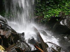 Curtis Falls, North Tamborine, Q. by <b>Ian Stehbens</b> ( a Panoramio image )