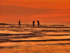 catch the goldfish by <b>beyer99</b> ( a Panoramio image )