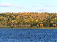 Autumn in Bor by <b>Khilchenko Andrew</b> ( a Panoramio image )