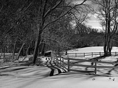 Paddock Fence in Black & White by <b>Scott Gore</b> ( a Panoramio image )