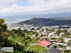 View 1- Mt Victoria & Wellington Harbour  by <b>Eva Kaprinay</b> ( a Panoramio image )