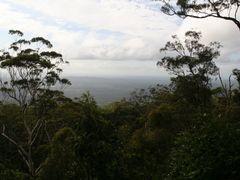 tamborine-2011a.jpg by <b>James Popple</b> ( a Panoramio image )