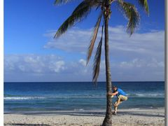 (messi10) Playa Guanabo – searching for sweet food  [20°]   by <b>©polytropos</b> ( a Panoramio image )