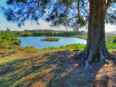 Humedales del Santa Lucia, Mirador Parque Lecocq_HDR by <b>Javier Manana</b> ( a Panoramio image )