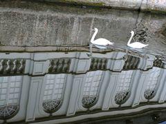 Reflets sur les canaux de Bruges by <b>markjone</b> ( a Panoramio image )