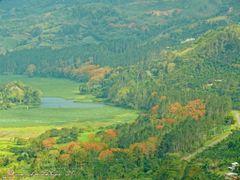 Valle de Orosi--Una joya en el corazon de Costa Rica by <b>Melsen Felipe</b> ( a Panoramio image )