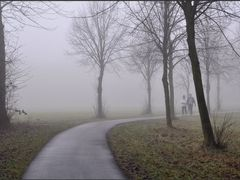 Maassluis - Misty morning walk by <b>Ria Maat</b> ( a Panoramio image )
