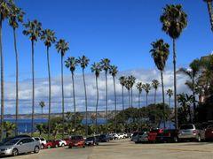 Coast Boulavard, La Jolla, San Diego, California by <b>davidcmc58</b> ( a Panoramio image )