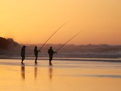 Fishing on gold by <b>@mabut</b> ( a Panoramio image )