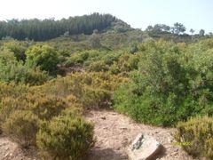 Tabarka, Tunisko by <b>moofy</b> ( a Panoramio image )