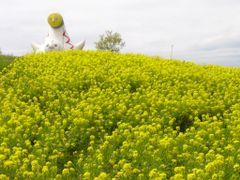 EXPO Park by <b>S_Mori</b> ( a Panoramio image )