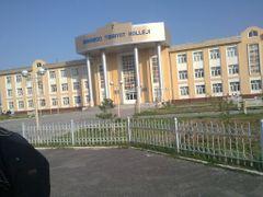 Bekobod Tibbiyot Kolleji by <b>Abduvali</b> ( a Panoramio image )