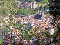 Spring / Fruhjahr / Printemps (11) by <b>OPAPAYA</b> ( a Panoramio image )