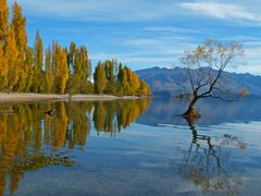 Autumn Colours, Lake Wanaka, South Island of New Zealand by <b>Rogerbee</b> ( a Panoramio image )