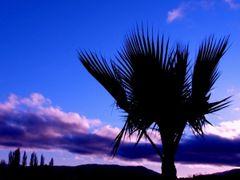 Amanecer en la costanera by <b>Erwin Woenckhaus</b> ( a Panoramio image )