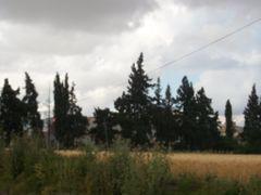 Paysage Settat by <b>Mhamed Zarkouane</b> ( a Panoramio image )
