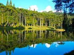 Lagoa 1 by <b>Alfredo Brant</b> ( a Panoramio image )