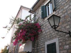 Herceg Novi - Stari grad 2 by <b>Stoja</b> ( a Panoramio image )