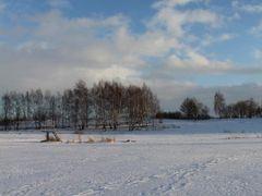 Zima nad Stawem Trzcinowym - Winter over the Staw Trzcinowy lake by <b>Tomasz Popiel</b> ( a Panoramio image )