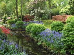 The hidden garden - Keukenhof by <b>francinelb3</b> ( a Panoramio image )