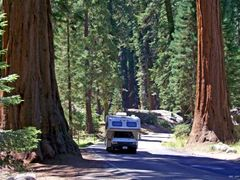 Sequoia or Caravan by <b>Gasp</b> ( a Panoramio image )