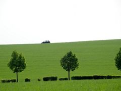 "It""s green so green... by <b>manfrezo</b> ( a Panoramio image )"