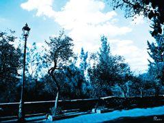 Mexico, D.F., Delegacion Miguel Hidalgo, Para ti amiga Rafl, Lam by <b>Pecg17</b> ( a Panoramio image )