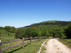 Jelov Klanac near Rakovica by <b>Marin Stanisic</b> ( a Panoramio image )