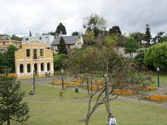 Bosque Alemao vista a partir de onibus City Tur - Curitiba - Par by <b>Paulo Yuji Takarada</b> ( a Panoramio image )