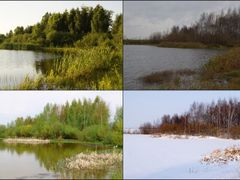 Four Seasons by <b>TheStas</b> ( a Panoramio image )