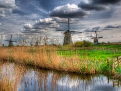 The famous 19 windmills which were used to drain the Alblasserwa by <b>kluke</b> ( a Panoramio image )