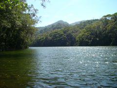 Acude do Camorim - Parque da Pedra Branca by <b>ADILSON REZENDE-ARS</b> ( a Panoramio image )
