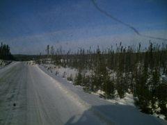 caribou by <b>camoman</b> ( a Panoramio image )