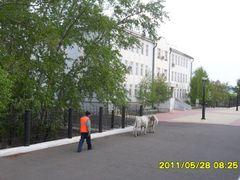Customs building by <b>Batjav Tsanjid</b> ( a Panoramio image )