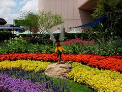 Disney World, Epcot:  Tinkerbell Topiary by <b>Scott Gore</b> ( a Panoramio image )