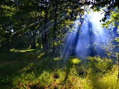 Rays by <b>IceBox</b> ( a Panoramio image )