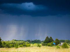 Rain by <b>Jevgenijs Nikitins</b> ( a Panoramio image )