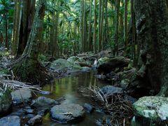 Cameron Falls by <b>thatsnotmyname1243</b> ( a Panoramio image )