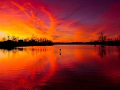 Red Golden Sunset with Water Reflection - Jacobson Park (Lexingt by <b>Kalin Ranchev</b> ( a Panoramio image )