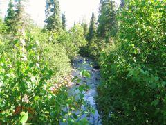 Amethyst Creek  by <b>aks 1</b> ( a Panoramio image )