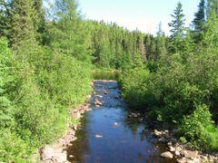 Walkinshaw Creek  by <b>aks 1</b> ( a Panoramio image )